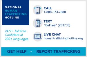 hotline-widget-big